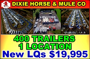 Dixie Horse and Mule Co
